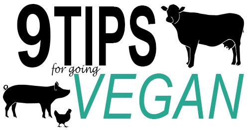 tips for going vegan