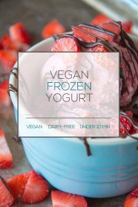 Dairy-Free Frozen Yogurt