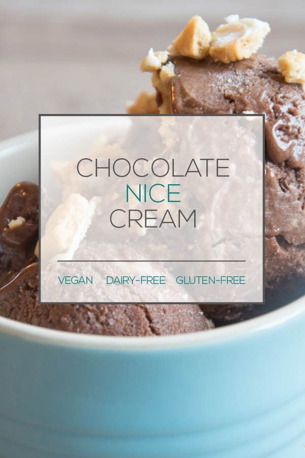 Dairy-Free Chocolate Ice Cream
